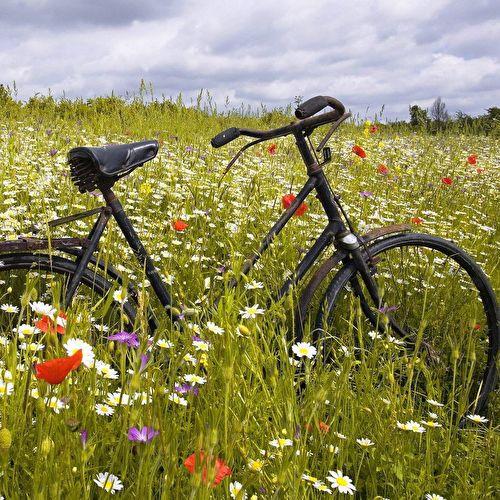 2 dagen fietsen