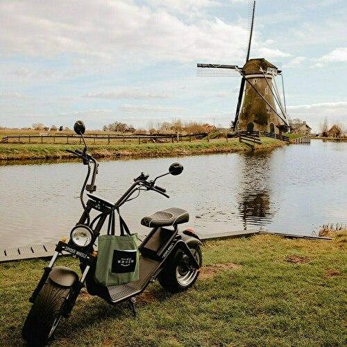 E-Chopper Gouda